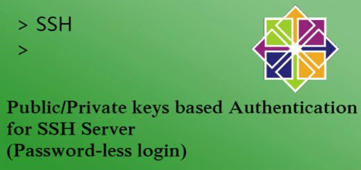 Public/Private keys authorization for ssh server