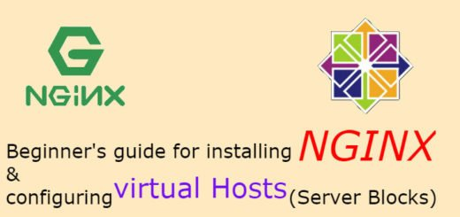 Easy guide to install NGINX server & configuring Virtual
