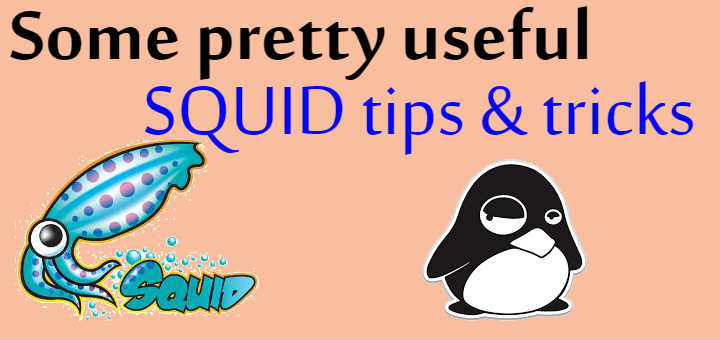 Some pretty useful SQUID tips & tricks - LinuxTechLab