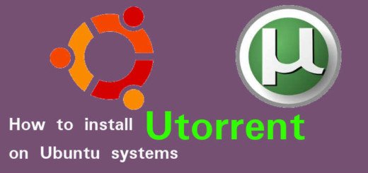 utorrent on ubuntu