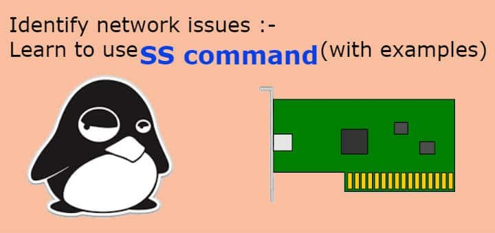 ss command examples