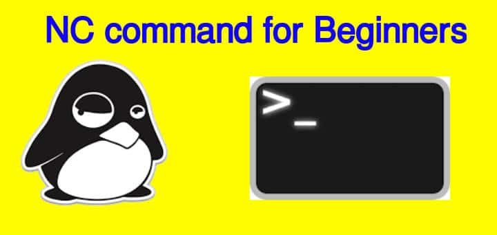 NC command (NCAT) for beginners - LinuxTechLab